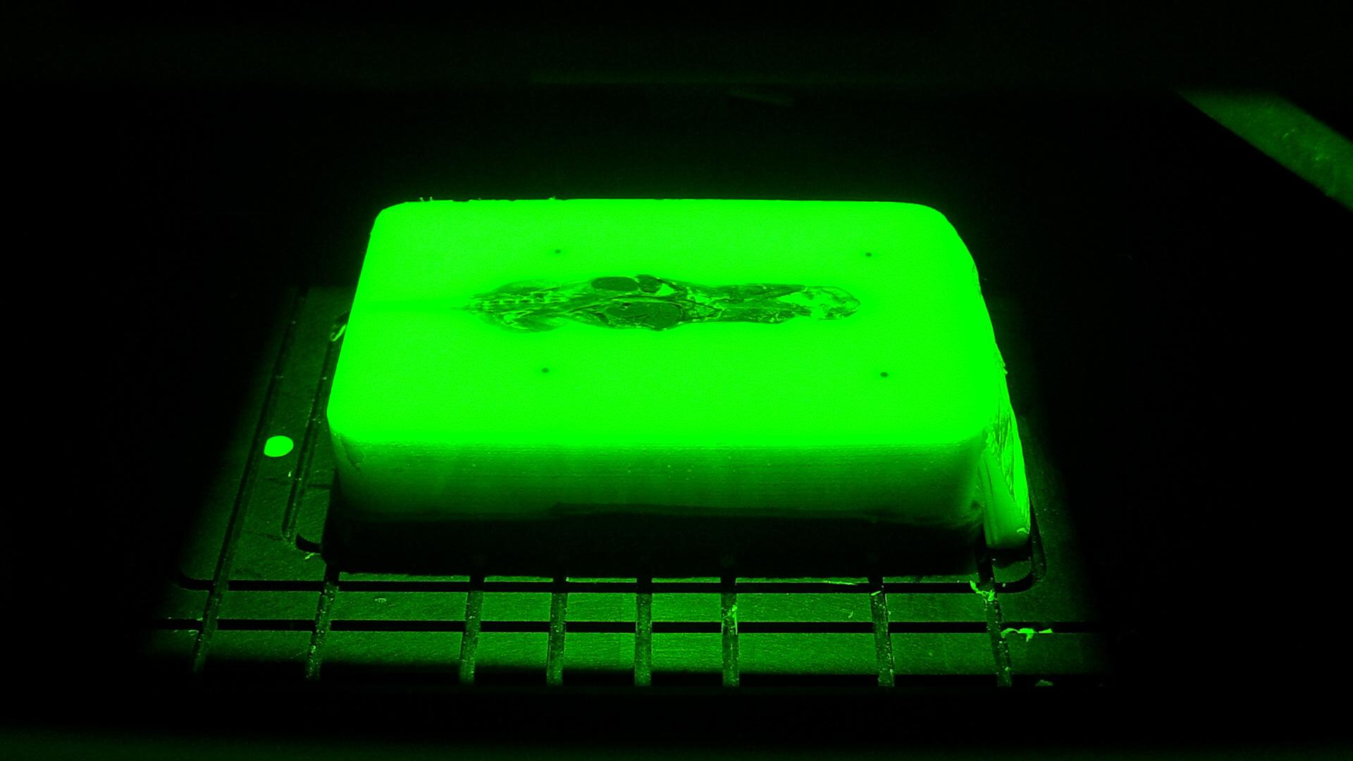 tissue-fluorescent-green