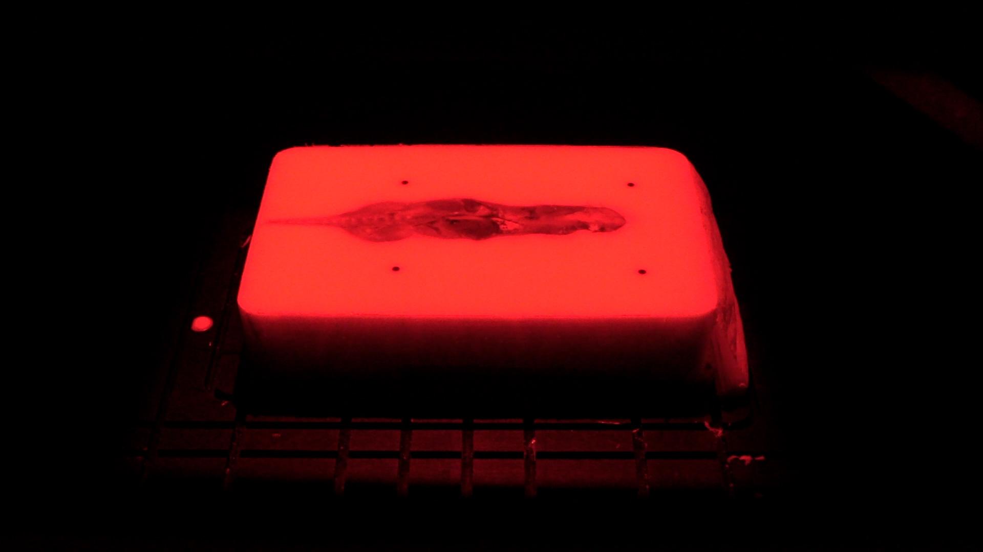 tissue-fluorescent-red